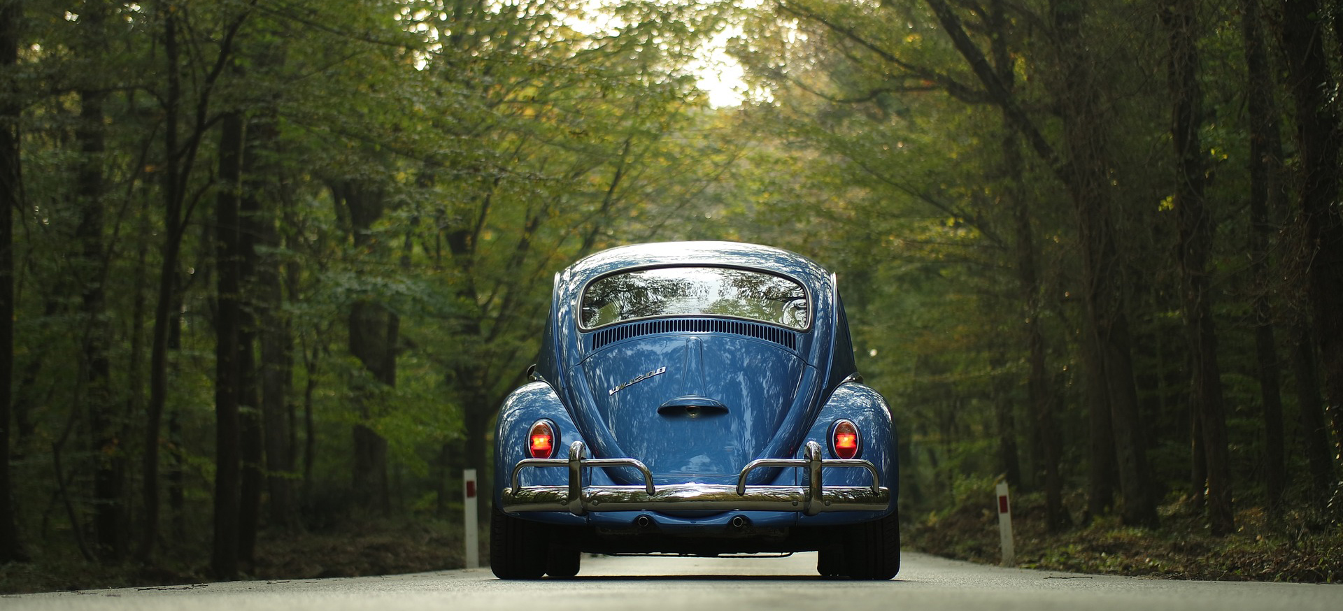 Blue Beetle in Louisiana | Breast Cancer Car Donations