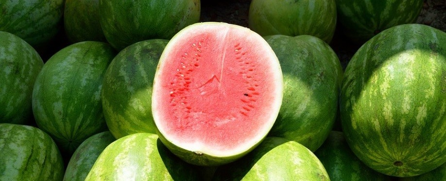 Healthy Watermelons | Breast Cancer Car Donations