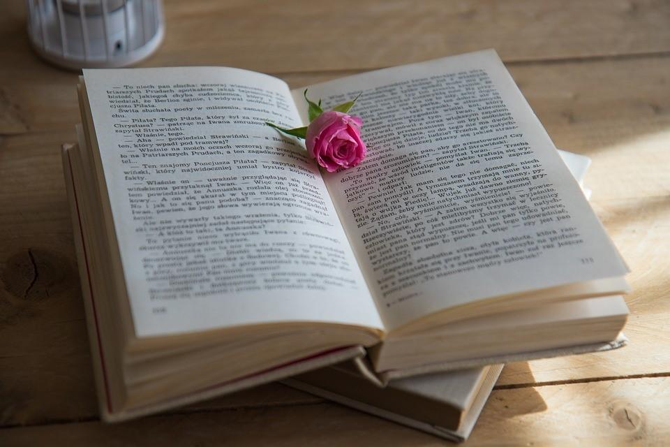 Celebrating Novel Writing Month | Breast Cancer Car Donations