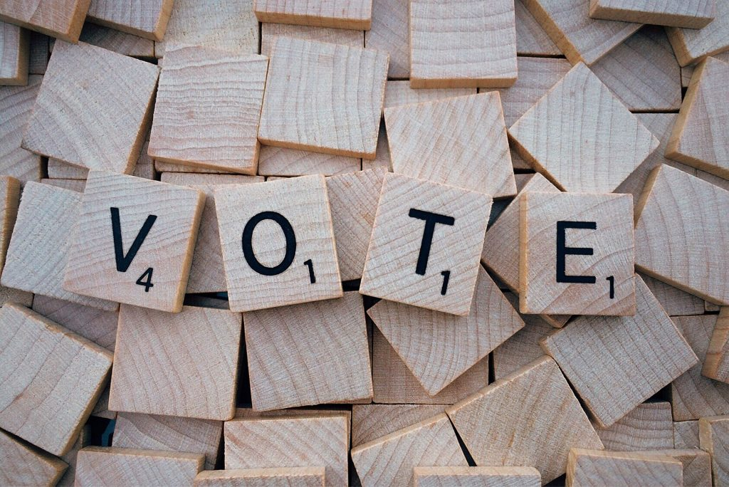 Vote Wisely this Election Day | Breast Cancer Car Donations