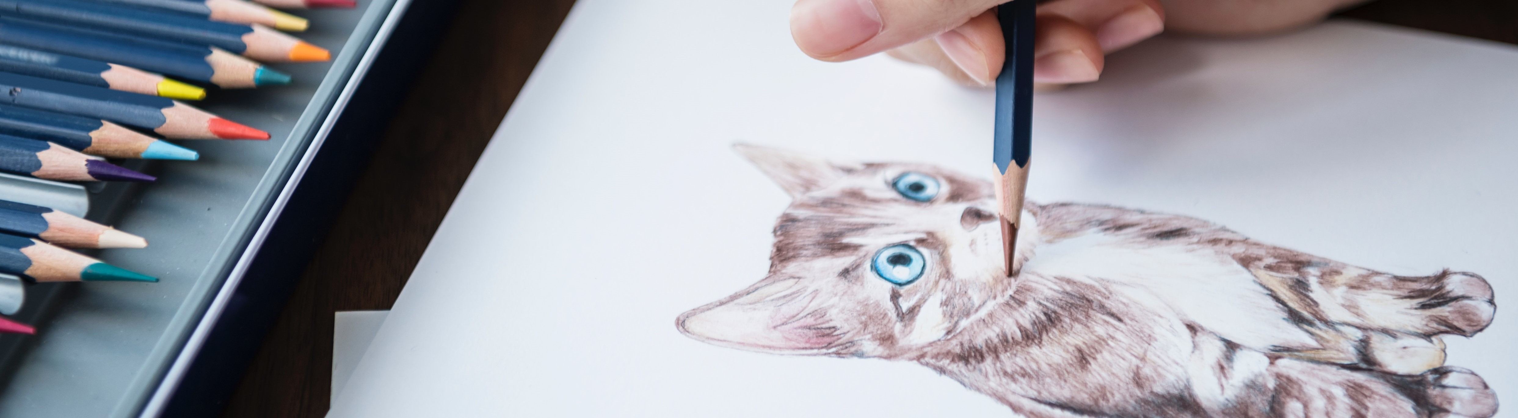 Drawing a Cat   Breast Cancer Car Donations