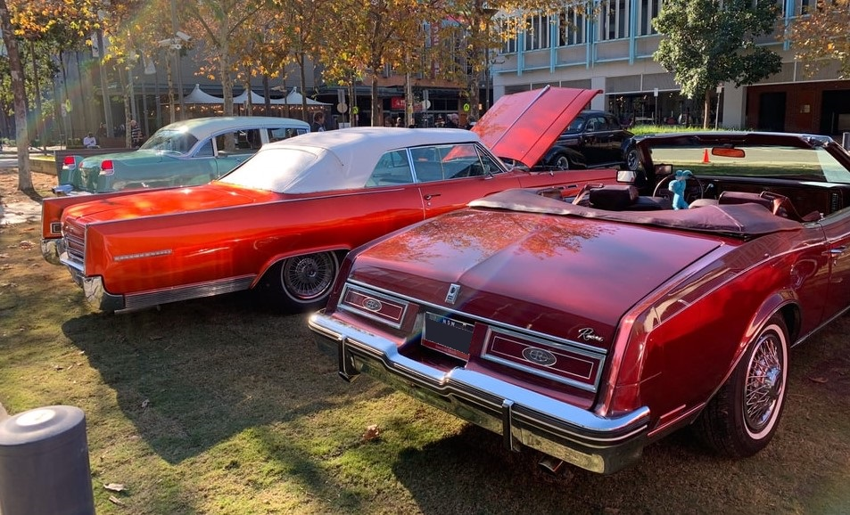 Classic Cars in a Park | Breast Cancer Car Donations
