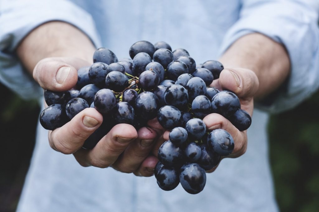 Fresh Grape Fruits for New Year   Breast Cancer Car Donations