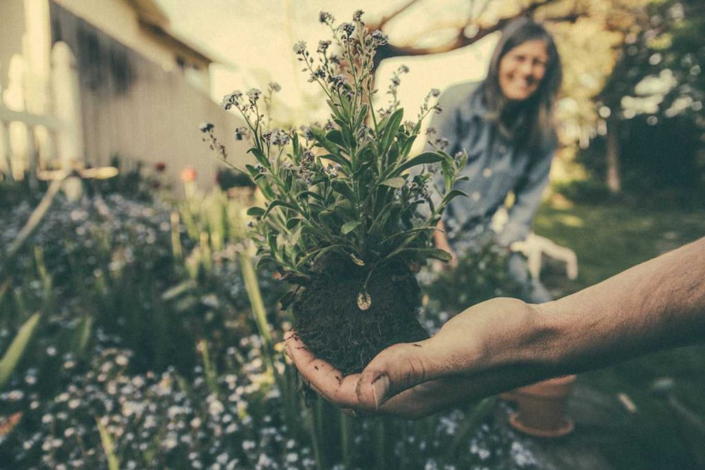 People Enjoying Gardening | Breast Cancer Car Donations
