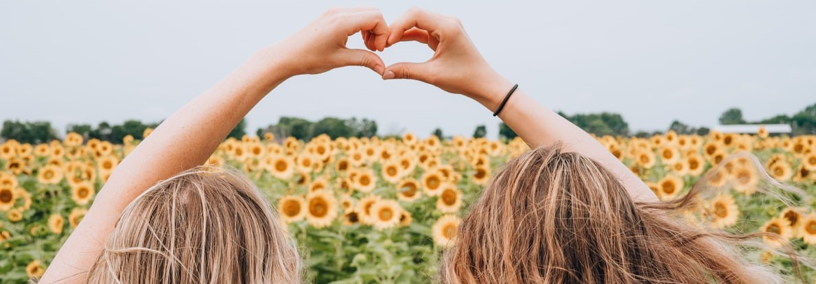 Friendship in a Sunflower Field | Breast Cancer Car Donations